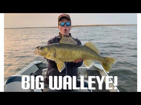 Jigging For FAT Fall WALLEYE! (My Story)