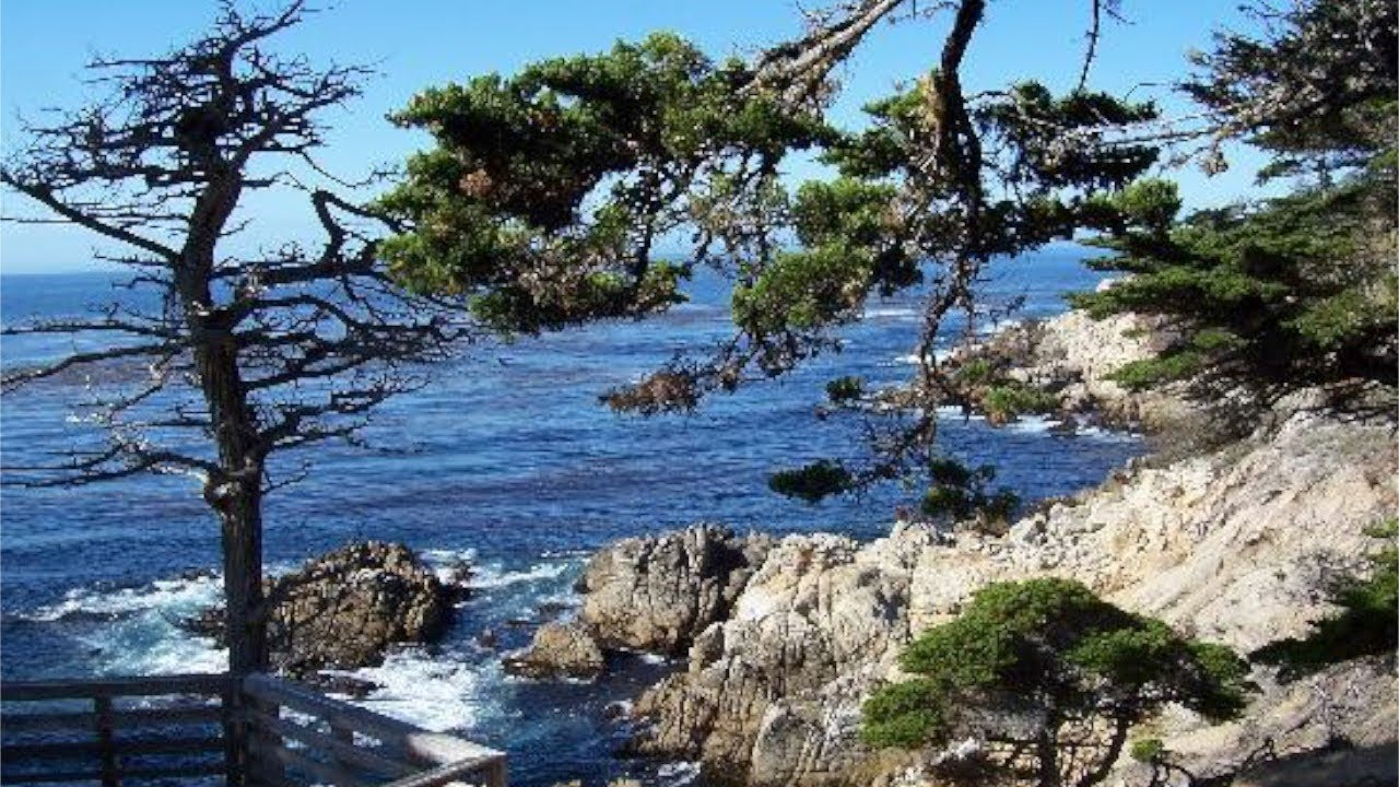 Driving The Scenic 17 Mile Drive Pebble Beach And Carmel By The Sea California Youtube