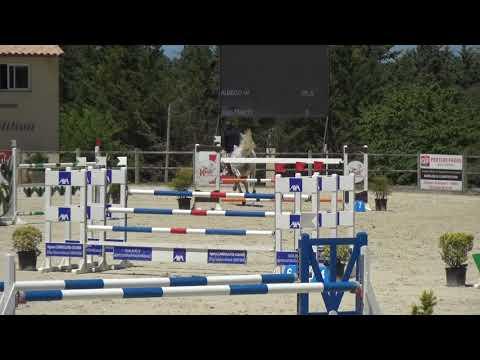 Cheval CSO 135 /145