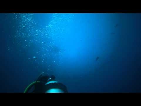 Manta fliping, German Channel Palau