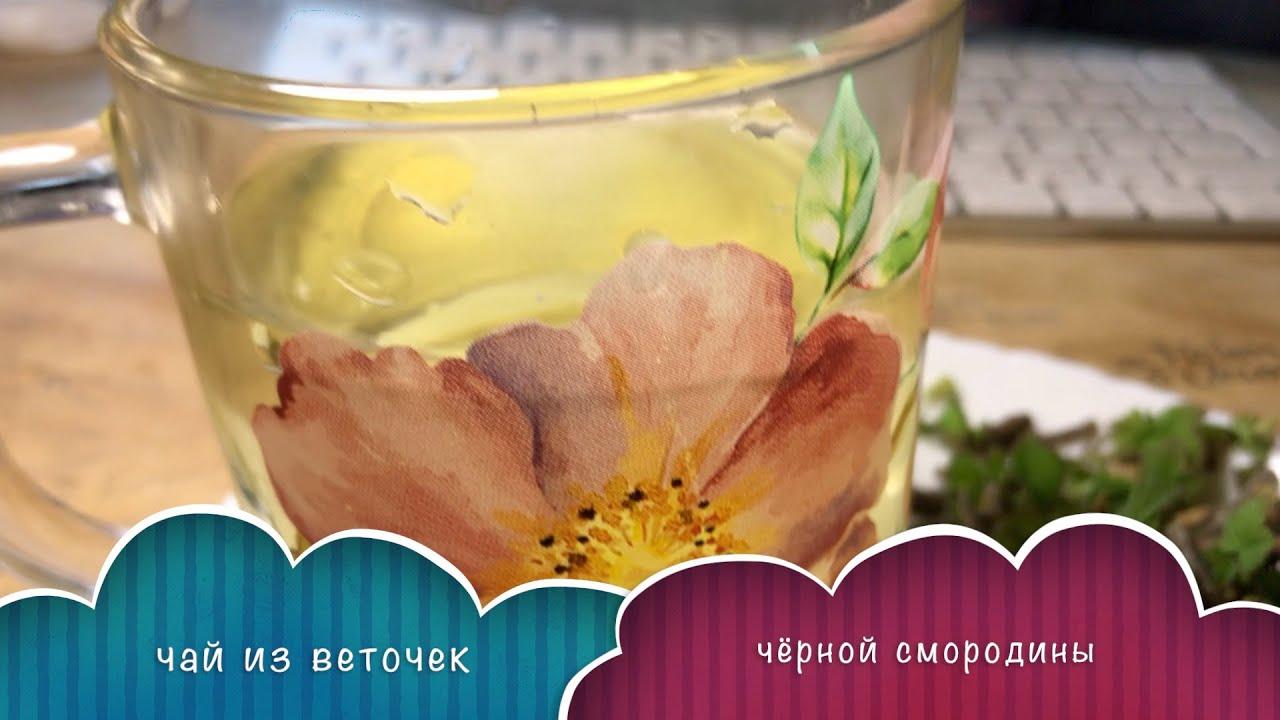 Чай из веточек чёрной смородины
