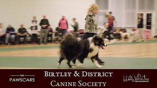 The Pawscars | Training Class of the Year Finalist 2020 | Birtley & District Canine Society