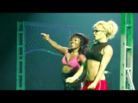 Britney Spears - The Circus Tour - Madison Square Garden -Toxic HD