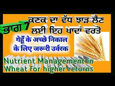 Nutrient management in