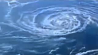 miracle name of allah writing in sea of japan عجائب خلق الله سبحانه وتعالى