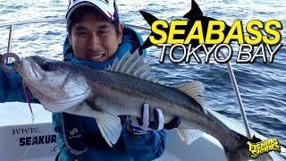Pescaria de Seabass no Japão [Tokyo Bay]