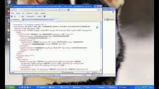 Как отредактировать декларацию 2014 или как преобразовать файл XML или .dc3 в PDF.