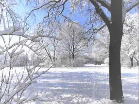 Medizin Mann - Winterzeit (feat.Tomzen,Täterprofil & Klabautermann)