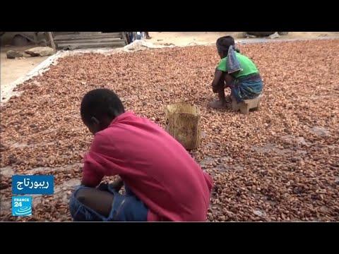 كوت ديفوار: فضيحة الإتجار بالأطفال واستغلالهم للعمل في مزارع الكاكاو  - نشر قبل 2 ساعة