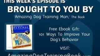 Dog Training Tv - Episode 7 - Soft Mouth