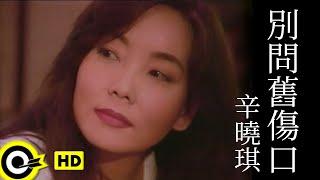 辛曉琪 Winnie Hsin【別問舊傷口 Don't touch the scar】Official Music Video