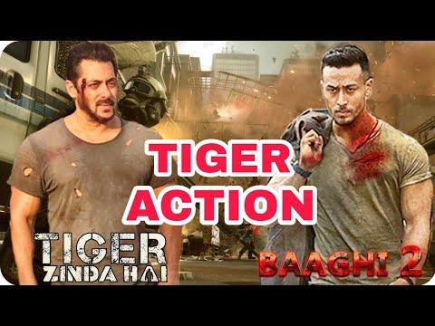 Salman Khan || Tiger Shroff || Bollywood 2 Tiger Similar Action Look || Baaghi 2 || Tiger Zinda Hai