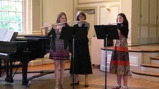 Flute Trio Minuet Gottfried Finger