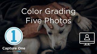 Color Grading Five Images   Webinar   Capture One 12