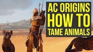 Assassin's Creed Origins ANIMAL TAMING Gameplay (AC Origins Gameplay - Assassin's Creed Or