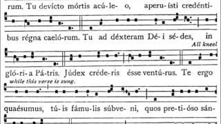 Enregistrements à l'usage des choristes scholas grégoriennes qui souhaitent apprendre le répertoire grégorien de tous les dimanches et fêtes l'année l...
