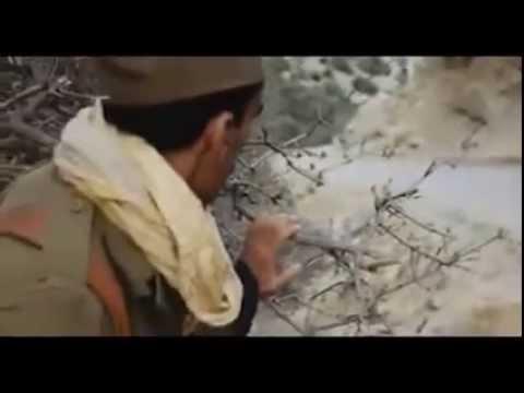 chanson-1-novembre-1954-...-clip-pour-l'algerie---nouveau