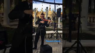 Sunset Strings - Kapok Special Events Center