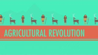 The Agricultural Revolution: Crash Course World History #1(Crash Course World History is now available on DVD! Visit http://store.dftba.com/products/crashcourse-world-history-the-complete-series-dvd-set to buy a set for ..., 2012-01-26T20:12:01.000Z)