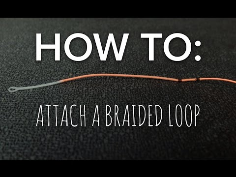 Attaching a Braided Loop to a Fly Line