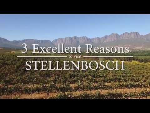 Reasons to Visit Stellenbosch - Travel Vlog