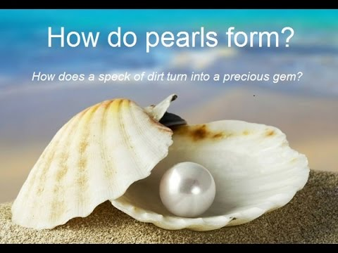 How do pearls form ? - YouTube