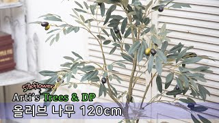 아티's 나무 DP -  올리브 나무 120cm / 실…