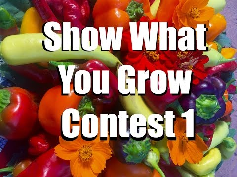 Show What You Grow - Instagram Contestand Vegetable Garden Tips Series
