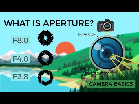This Animation is a Simple Lesson on Aperture in Photography
