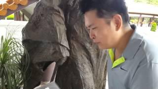 サンパウロにある中国人が建設されたお寺に来ています。星雲大師の像が見えます。