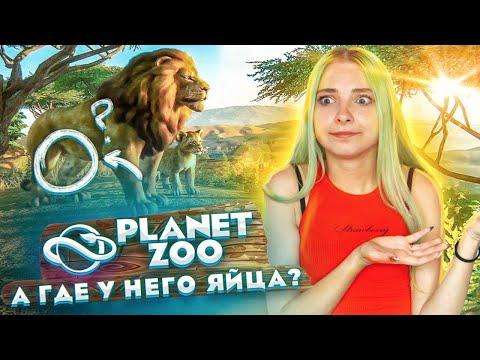 ГДЕ ЯЙЦА У ЛЬВА?! ОТКРЫЛА СВОЙ ЗООПАРК ► Planet Zoo
