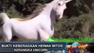 on the spot trans 7 keberadaan hewan mitos