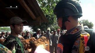 Marak Pencurian Sapi, Kapolres Lumajang dan Tim Cobra Sidak ke Pasar Hewan