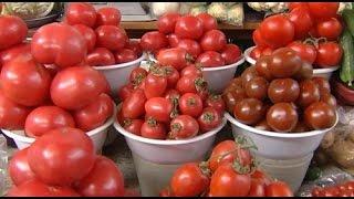 К концу 2016 года алматинцы смогут приобретать помидоры и огурцы, выращенные в городе (22.01.16)(, 2016-01-25T07:59:38.000Z)