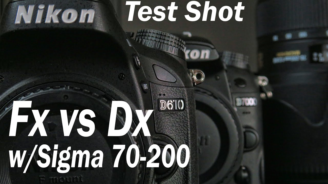 Testing for Clarity the Sigma 70-200 on Full Frame vs Crop Sensor ...
