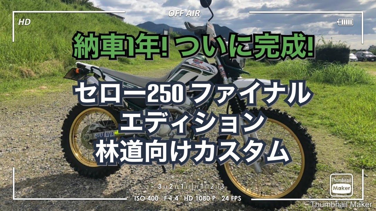 【セロー250】ついに 林道 向け カスタム 完成!( ファイナル・エディション納車1年)