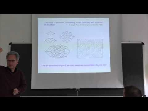 J. Krug. Statistical Physics of Biological Evolution 5