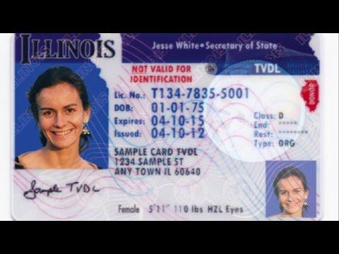 Driver's license Chicago
