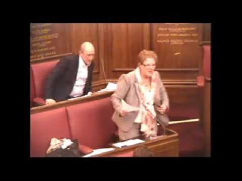 Council meeting, 1 February 2017 - Debate on revenue budgets