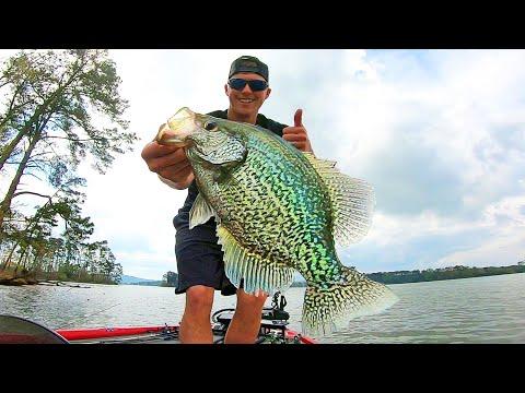 Fishing For BIG CRAPPIE On LAKE GUNTERSVILLE! Spring 2020!