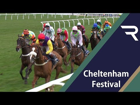 Cheltenham Preview - Gold Cup - 2019 - Racing TV
