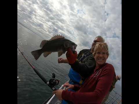 Westport Charters Bottom Fishing Trip 2019