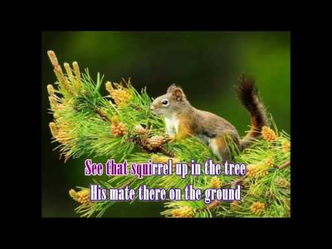 Whispering Pines - Johnny Horton Karaoke
