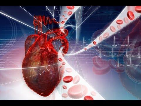 Как быстро снизить уровень холестерина в крови. Продукты и