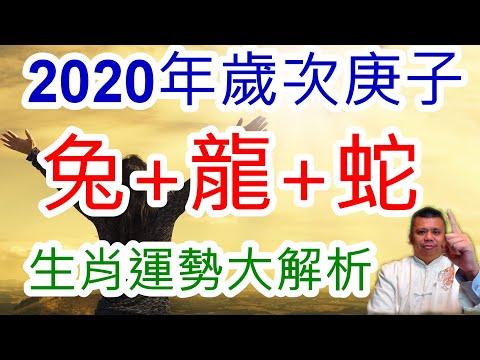 2020年生肖屬兔屬龍屬蛇流年解析!這一個生肖,小心渣男與綠茶婊!哪一個生肖會在2020年升官又發財?趕緊來看看,2020年的生肖運勢解析!