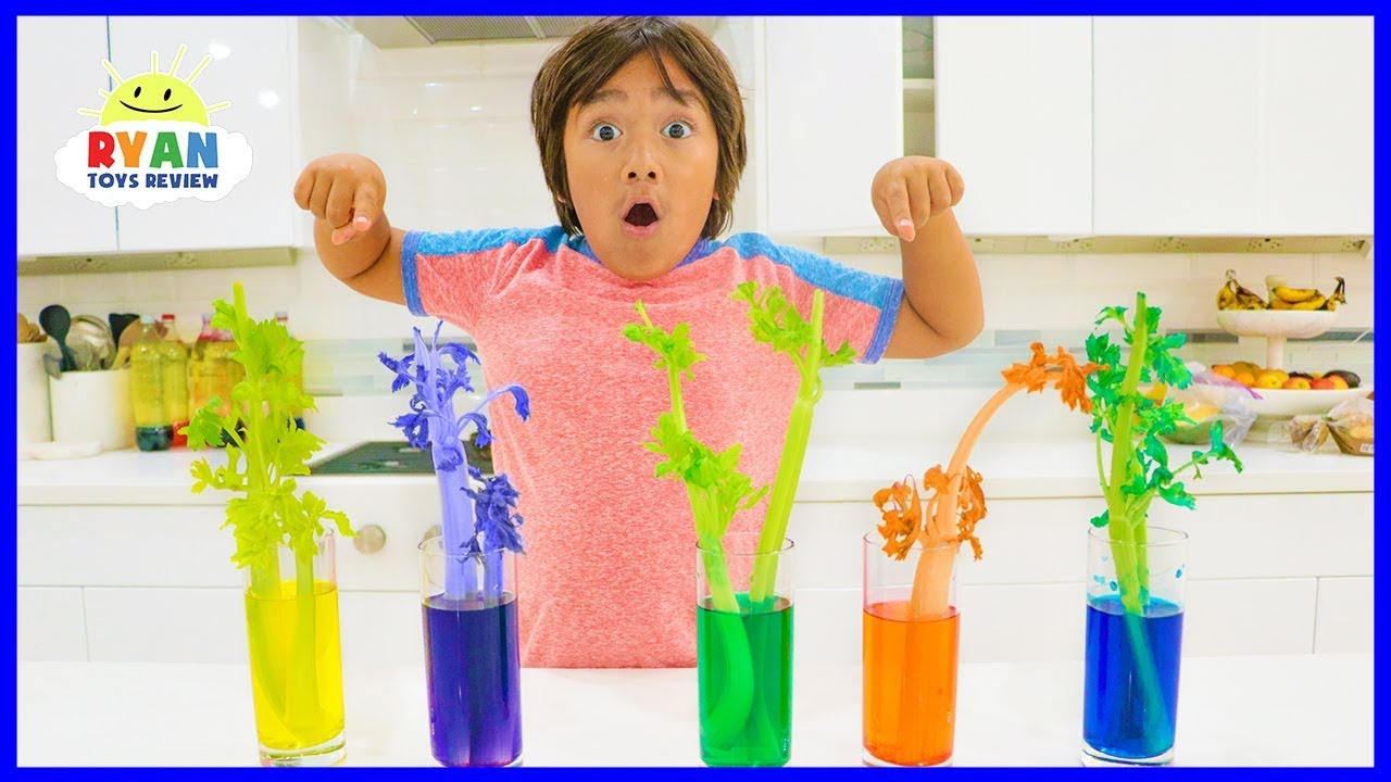 How to make Color Changing Celery!!! Science Experiments for kids