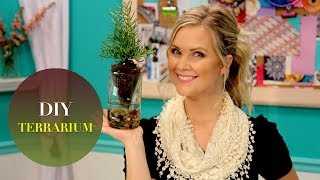 Pottery Barn Terrarium: The Diy Challenge On The Mom's View