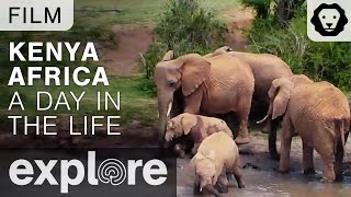 Kenya Africa - A Day in the Life of the Explore Live Cams - Film thumbnail