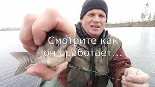 Крупная Щука на крупного живца Озеро Кщара Рыбалка Отдых