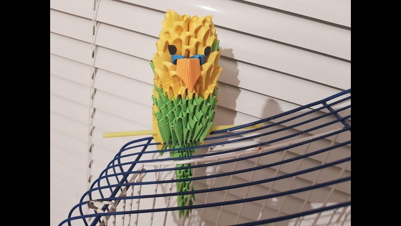 Волнистый попугай. Модульное оригами